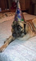 x-1st birthday.jpg